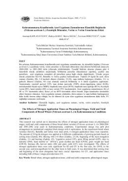 PDF ( 7 )