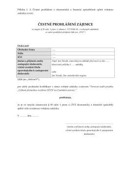 Soutěžní dokumentace4