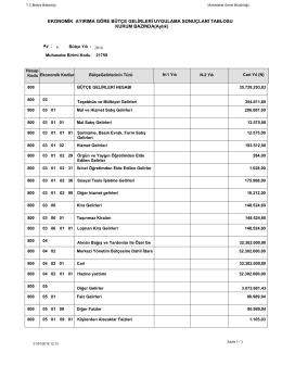 Haziran Bütçe Gelirleri Uygulama Sonuçları
