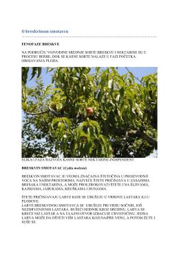 Zelena prognoza 12072016