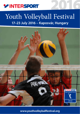 Youth Volleyball Festival