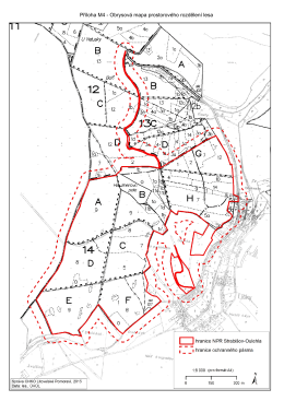 Příloha M4 - Obrysová mapa prostorového rozdělení lesa