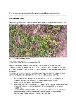 Zelena prognoza 15082016