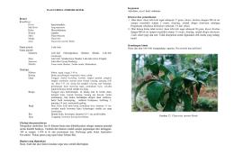 Jurnal metode ilmiah pdf