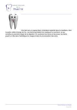 Une dent est un organe blanc minéralisé implanté dans le maxillaire