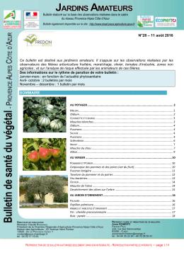 BSV_Jardins-28_110816