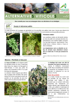 alternatives viticoles - Chambre d`Agriculture d`Indre et Loire