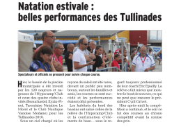 Article DL - Tullins 2016