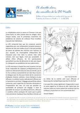 Téléchargement du Bulletin de liaison n°1 (pdf - 1,2Mo)