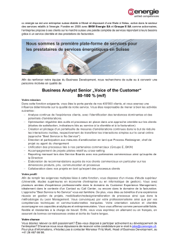"Business Analyst Senior ""Voice of the Customer"""