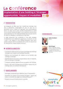 Implantation d`une holding à l`étranger : opportunités, risques et