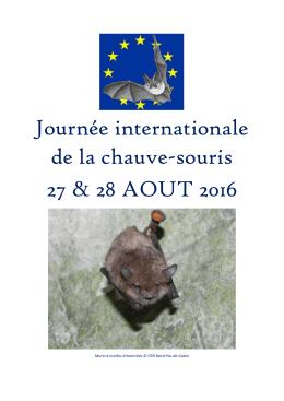 Nuit de la Chauve-souris 2016 : Hauts-de
