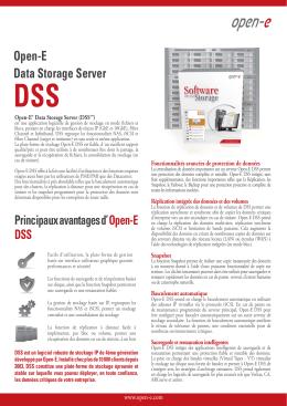 Open-E DSS Datasheet