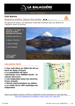 Chili Bolivie Altiplano andino, désert des Andes Les
