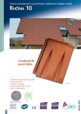 Rhôna 10 - IMERYS Roof Tiles