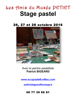 Limoux octobre 2016 Stage pastel