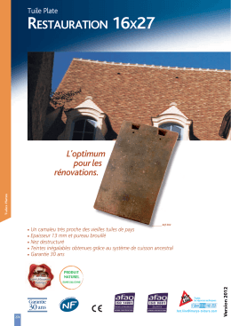restauration 16x27 - IMERYS Roof Tiles