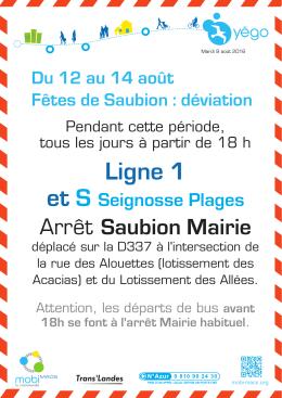 Information pendant les Fêtes de Soustons.