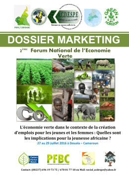 Dossier Marketing - TET