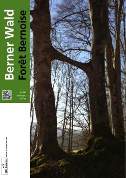 TITELBILD? - Berner Wald – Forêt Bernoise