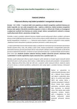 Přípravné dřeviny mají dobré produkční i energetické vlastnosti