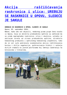 Akcija raščišćavanja raskrsnica i ulica: UREĐUJU SE
