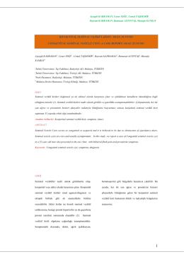 PDF ( 2 )