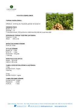 Patates Gübreleme Programı