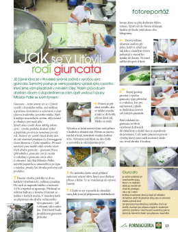 o výrobě - La Formaggeria