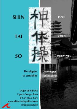 Affiche Shintaïso