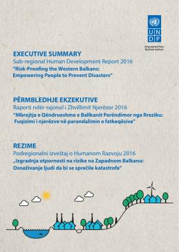 executive summary përmbledhje ekzekutive rezime