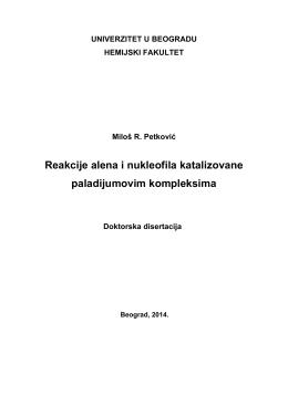 Disertacija4349