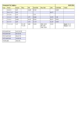 PDF Sonuçlar Özet