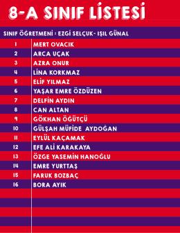 8-a sınıf listesi