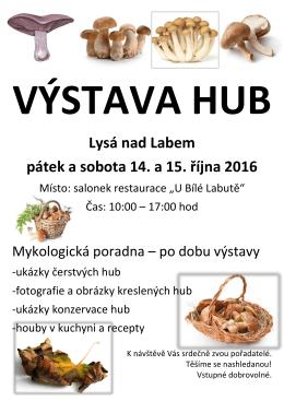 VÝSTAVA HUB Lysá nad Labem pátek a sobota 14. a 15. října 2016