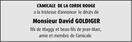 Monsieur David GOLDIGER