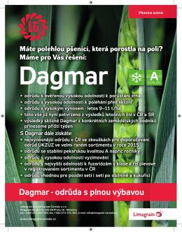 Nejpěstovanější odrůda ozimé pšenice Dagmar - Limagrain
