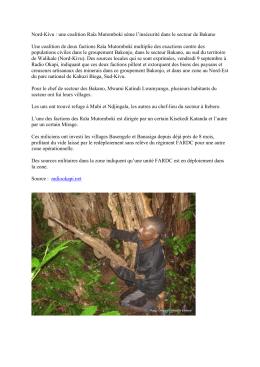 Nord-Kivu : une coalition Raïa Mutomboki sème l`insécurité dans le