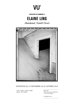 TRIBUTE EXHIBITION TO Elaine Ling Abandoned