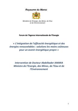 Intervention de Docteur Abdelkader AMARA Ministre de l`Energie