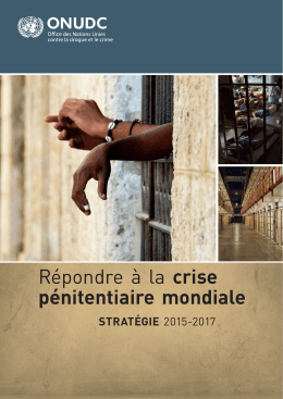 Stratégie 2015-2017 - United Nations Office on Drugs and Crime