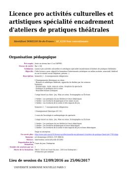 Licence pro activités culturelles et artistiques spécialité