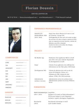 Voir mon CV - Florian Doussin