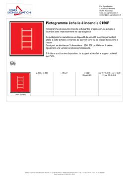 Pictogramme échelle à incendie 0150P