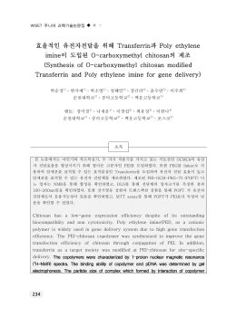 효율적인 유전자전달을 위해 과 Transferrin Poly ethylene 이 도입된