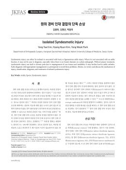 원위 경비 인대 결합의 단독 손상 - Journal of Korean Foot and Ankle