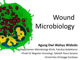 - Magister Imunologi