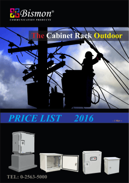 "the cabinet outdoor 19"" wall rack mount outdoor"
