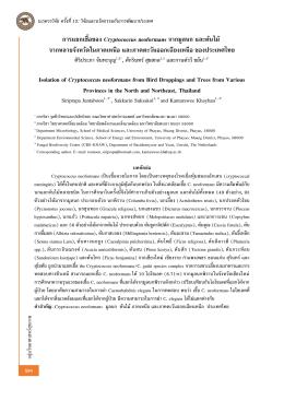 การแยกเชื้อของ Cryptococcus neoformans จากมูลนก และต้นไม้ จา