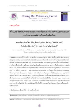 PDF - คณะสัตวแพทยศาสตร์ มหาวิทยาลัยเชียงใหม่